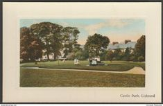 Castle Park, Liskeard, Cornwall, c.1905-10 - Botterill Postcard