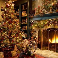 Beautiful sights of Christmas