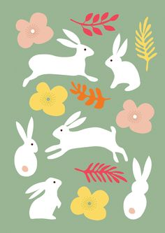 Nadia Taylor - rabbits - www.nadiataylor.co.uk