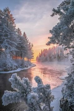 Foto Picture, Winter Magic, Winter Scenery, Winter Sunset, All Nature, Snow Scenes, Winter Landscape, Vista Landscape, Christmas Landscape