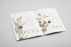 Royal Botanic Gardens in Melbourne by Marius Wathne, via Behance