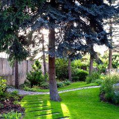 PRAHA – HORNÍ MĚCHOLUPY, PRIVÁTNÍ ZAHRADA Walking Paths, Garden Paths, Landscape Architecture, Courtyard Ideas, Praha, Outdoor, Inspiration, Landscaping, Gardens