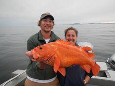 Ketchikan, Alaska Fishing