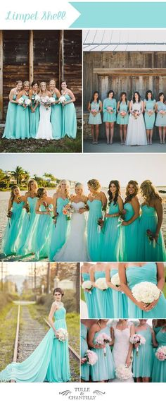 limpet shell blue summer beach wedding colors and blue bridesmaid dresses.... Love the colour and style of these beautiful bridesmaid dresses