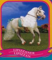 Grand Champions Lipizzaner. this one was my second favorite.