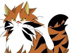 tigerstar sss warrior cats - Google zoeken