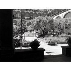 #napoli #convento #naples #architecture #chiostro #art #arte #photography #blackandwhite #b&w #nature Powered by @ilraggio