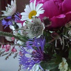Dessa ljusa nätter. Magiskt. Njuter! #ruthochgreta #nätbutik #sommar #sommarnätter #blommor #pion #blåklint #prästkrage #stjärnflocka #vas #madleys #magiskt...