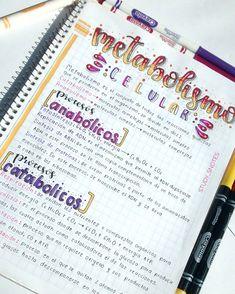 Bullet Journal Notes, Bullet Journal Lettering Ideas, Bullet Journal School, Pretty Notes, Cute Notes, Class Notes, School Notes, Study Inspiration, Bullet Journal Inspiration
