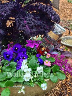 Wine Bottle Watering Device With Copper Tubing for Container Gardens