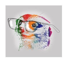 A meerkat wearing glasses, Illustration, sketched then edited on photoshop and illustrator.