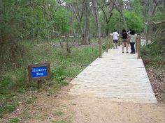 Best Hiking Trails In Houston