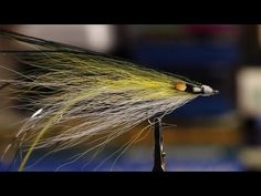 Great tutorial video on tying single wing flatwing flies for blues and stripers (Tightline Productions)