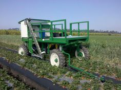 Robotic Strawberry Harvester - Self-propelled, self-navigating harvester capable of picking ripe strawberries. Includes conveyor system and packing support equipment.