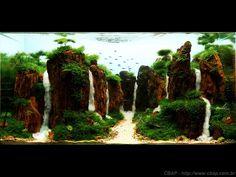 Concurso Brasileiro de Aquapaisagismo [CBAP] - Entrada Nº 024