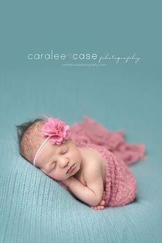 Caralee Case Photography: newborns