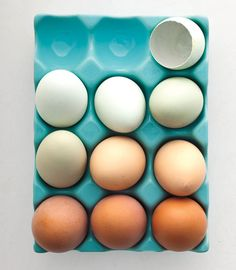 """The Art of Reading an Egg Carton""  March 29, 2012 / Posted by Carla Lalli for Bon Appetit."