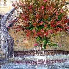 Un peu de couleur dans ce temps grisonnant ! #summer #chateaudepoudenas #monvillage #garden #france #sudouest #aquitaine #gascony #patrimoine #detail #magnifiquefrance #monumenthistorique #flowers #contryside #chair