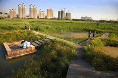 Qunli Stormwater Wetland Park Stores Rainwater While Protecting the Environment from Urban Development