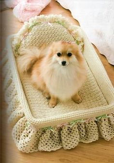 Cute dog in crochet bed****To bad I don't have a little doggy all my babies are BIG babies**** Crochet Dog Clothes, Crochet Dog Sweater, Pet Clothes, Dog Crochet, Free Crochet, Crochet Pattern, Chat Crochet, Cat Accessories, Animal Projects