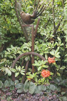 A copper fantail.  Private garden in Remuera, New Zealand.