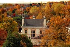 """""""Looking down at the aptly named district of Nottingham from Hart's Hotel garden. Plenty of autumnal flora in one of the city's more prestigious suburbs."""" Standard Hill, Nottingham, England."""