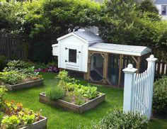 Garden Arrangement Ideas and Examples - Backyard Chicken Coop Plans, Chickens Backyard, Backyard Vegetable Gardens, Herb Garden, Chicken Barn, Farmhouse Garden, Farmhouse Landscaping, Modern Farmhouse, Urban Homesteading