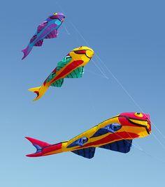 Mega Flying Fish kite line laundry stack. Designed by Juergen Ebbinghaus for Premier Kites. #fish #kites #windsock