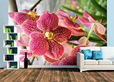 Fototapete Orchidee Wands, Design, Pictures, Dekoration, Orchids, Wallpapers, Products, Colors, Walls