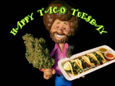 Funny Weed Memes, Weed Humor, Smoking Weed, Taco Tuesday, Fibromyalgia, Tacos, Funny Pictures, Family Guy