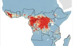 Mapping the zoonotic niche of Ebola virus disease in Africa - Cerca con Google