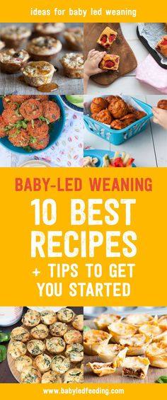 Thinking of starting baby led weaning? These are my top 10 tips and recipes to start your baby eating finger foods all by them self. Healthy recipe ideas to start blw.  via @https://www.pinterest.com/babyledfeeding