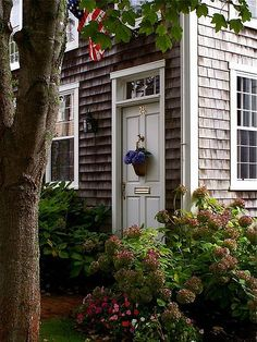my choice of home would be a cape cod with cedar shakes and white trim...with hydrangeas in front!