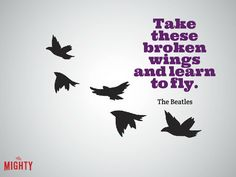 """Photo of birds that reads """"""""Take these broken wings and learn to fly."""""""