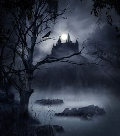 Halloween Backdrop castle black scary forest by BackdropDesign
