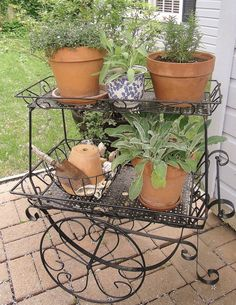 Wrought Iron plant cart