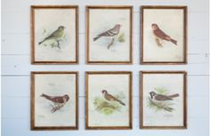 Our bird prints are vintage prints that add sweet detailing to any space! Use these vintage bird prints in any room to create beautiful wall decor. For more visit, www.decorsteals.com OR www.facebook.com/decorsteals.
