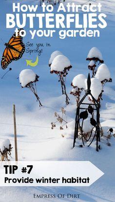 Tip #7: Provide winter habitat for overwintering butterflies. See more tips for attracting butterflies to your garden.....#spon