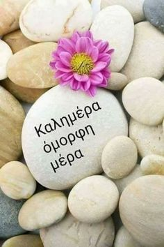 Καλημέρα όμορφη μέρα -  Good morning beautiful day Unique Quotes, Good Morning Messages, Good Afternoon, School Decorations, Night Photos, Greek Quotes, Positive Life, Happy Day, Good Night