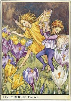 Illustration of the Crocus Fairies from Flower Fairies of the Spring. A boy and a girl fairy run across a field which is covered with crocuses. This illustration originally appeared in Flower Fairies of the Garden, Author / Illustrator Cicely Mary Barker