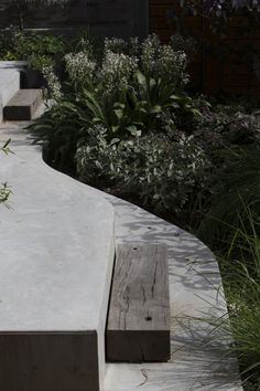 The Garden Project, Welsh Major Architects, Sydney Garden Oasis, Garden Spaces, Architecture Awards, Landscape Architecture, Landscape Materials, Concrete Garden, Outdoor Areas, Victorian Homes, Garden Projects