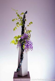 *** Ikebana - Plant Life