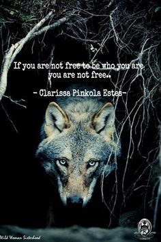 If you are not free to be who you are, you are not free. -Clarissa Pinkola Estes WILD WOMAN SISTERHOOD™