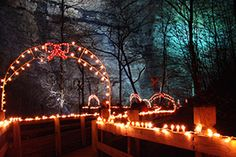 Seven Christmas Light Experiences for Your Holiday To-Do List « Virginia's Travel Blog. Natural Tunnel State Park