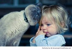 Cat gives kid great compassion – The cat just wants to share his warmth to others. The girl has not reacted to that warmth just yet.