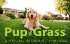 Safe Artificial Dog Grass designed for dogs by a pet product company. Looks and Feels Like Real Grass.Our doggie grass Safely satisfy's. Backyard Dog Area, Small Backyard Landscaping, Backyard Fences, Backyard For Kids, Backyard Ideas, Garden Ideas, Fence Ideas, Diy Dog Run, Grass Alternative