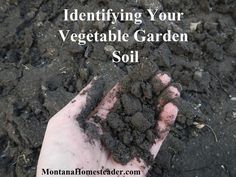 Identifying our vegetable garden soil is number one on our garden planning list. Because without doing a proper garden soil analysis, we won't know Vegetable Garden Soil, Garden Pests, Garden Tools, Garden Ideas, Garden Fertilizers, Garden Inspiration, Compost Soil, Homestead Gardens, Types Of Soil