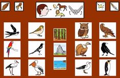 Informática para Educación Especial: Tableros de Comunicación Aumentativa Spanish Classroom, Conte, My Dream, Animals, Chore Charts, Birds, Kids Education, Communication Boards, Gift For Parents