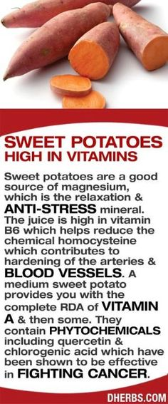 Sweet potatoes are high in vitamins and are a good source of mag­nesium, which is the relaxation & anti-stress mineral. The juice is high in vitamin B6 which helps reduce the chemical homocysteine which contributes to hardening of the arteries & blood vessels. A medium sweet potato provides you with the complete RDA of vitamin A & then some. They contain phytochemicals including quercetin & chlorogenic acid which have been shown to be effective in fighting cancer. #dherbs #healthtips by…