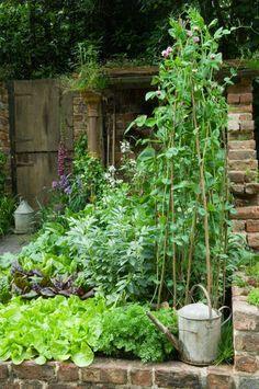 Aufbau eines Beetes. Vorne kleinwüchsige Pflanzen und hinten höhere Pflanzen. Vorne ist da wo die Sonne zuerst auftrift.